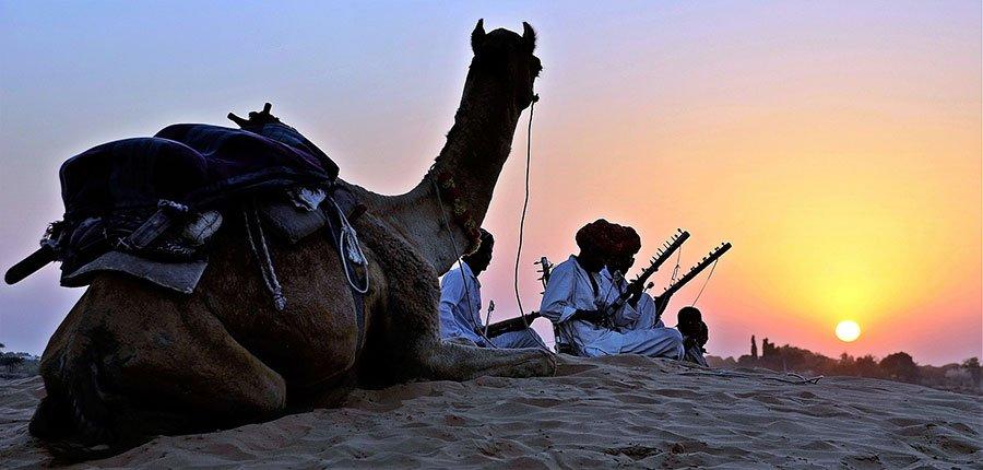 camellos en desierto del sahara