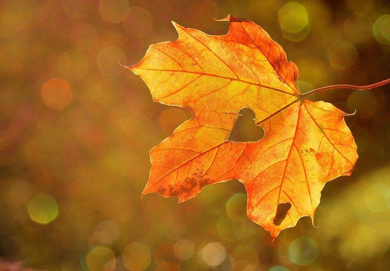 otoño en caravaca de la cruz